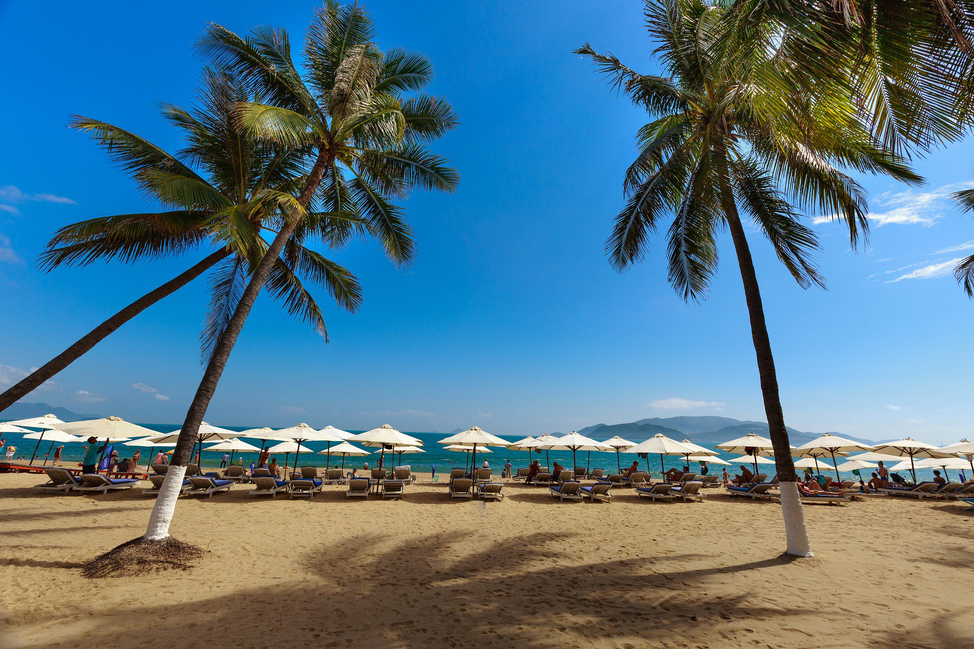 Islands of Vietnam – The Best Diving Destinations