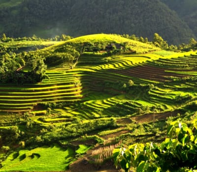 The Best Homestays in Sapa (For An Authentic & Personal Experience)